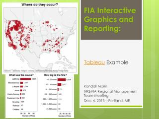 FIA Interactive Graphics and Reporting: