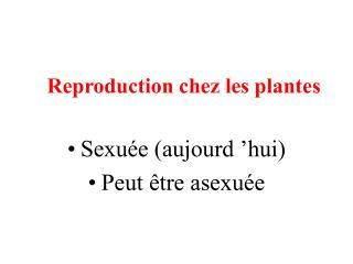 Reproduction chez les plantes