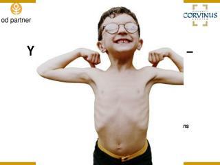 Y generáció az üzleti életben? – Empirikus eredmények