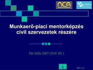 Munkaerő-piaci mentorképzés civil szervezetek részére