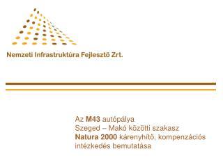 Az  M43  autópálya  Szeged – Makó közötti szakasz