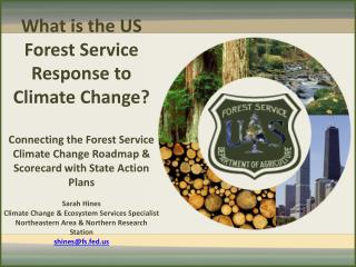 What is the US Forest Service Response to Climate Change?