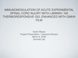 Sarah Mayes Project Presentation / Literature Review March 9, 2009 Schmidt Lab