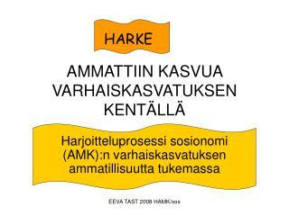 AMMATTIIN KASVUA VARHAISKASVATUKSEN KENTÄLLÄ