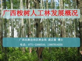 庞正轰   广西壮族自治区林业局 E-mail: pangzhenghong21 @163 电话: 0771-2266518