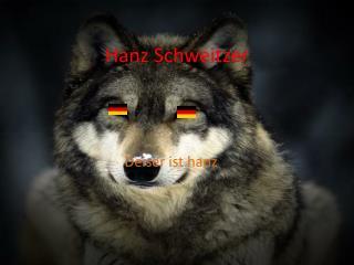 Hanz  Schweitzer