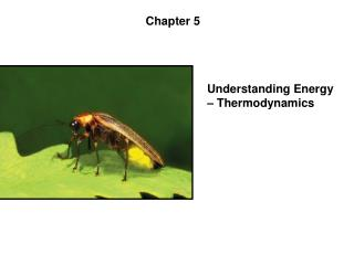 Understanding Energy   Thermodynamics