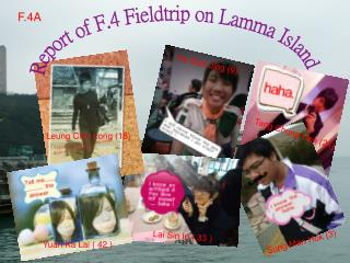 Report of F.4 Fieldtrip on Lamma Island
