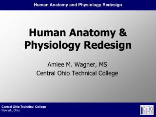 Human Anatomy & Physiology Redesign