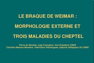 LE BRAQUE DE WEIMAR :  MORPHOLOGIE EXTERNE ET   TROIS MALADIES DU CHEPTEL  Pierre de Almeida, Juge Formateur, Vice-Pr si