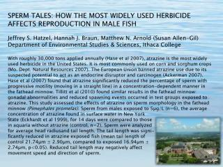 SPERM TALES: HOW THE MOST WIDELY USED HERBICIDE AFFECTS REPRODUCTION IN MALE FISH