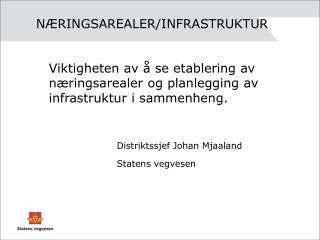 NÆRINGSAREALER/INFRASTRUKTUR