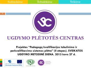 Sveikatos ugdymo bendroji programa – įgyvendinimo iššūkiai prof. dr. Rasa Jankauskienė