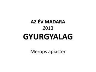AZ ÉV MADARA 2 013 GYURGYALAG  Merops apiaster