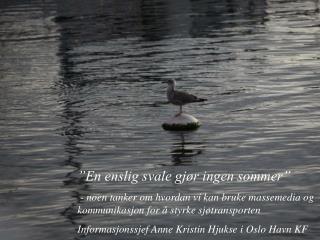 """""""En enslig svale gjør ingen sommer"""""""