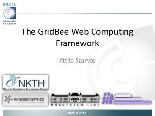 The GridBee Web Computing Framework