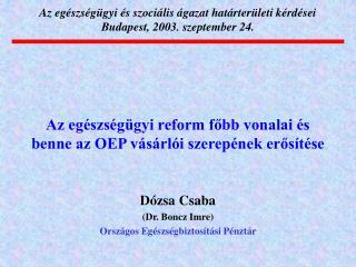 Az egészségügyi és szociális ágazat határterületi kérdései Budapest, 2003. szeptember 24.
