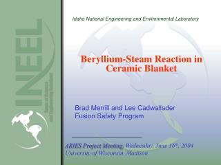 Beryllium-Steam Reaction in Ceramic Blanket