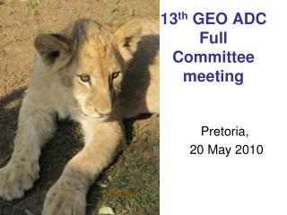13 th  GEO ADC  Full  Committee meeting