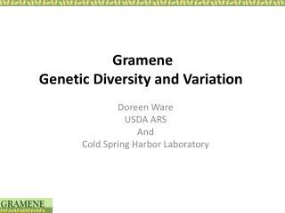 Gramene Genetic Diversity and Variation