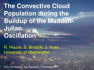 The Convective Cloud Population during the Buildup of the Madden-Julian Oscillation
