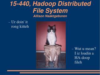 15-440, Hadoop Distributed File System Allison Naaktgeboren