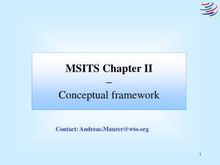 MSITS Chapter II  –  Conceptual framework