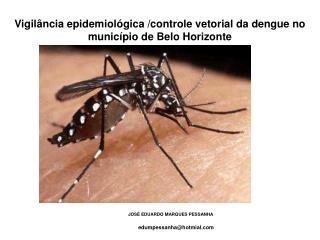 Vigilância epidemiológica /controle vetorial da dengue no município de Belo Horizonte