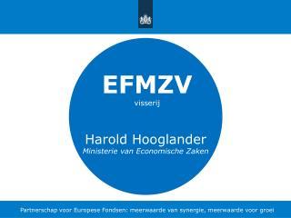 Partnerschap voor Europese Fondsen: meerwaarde van synergie, meerwaarde voor groei