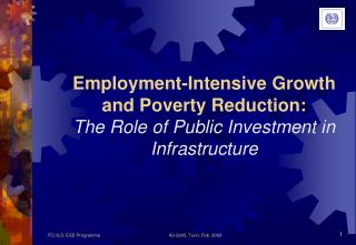 Employment-Intensive Growth and Poverty Reduction: The Role of Public Investment in Infrastructure