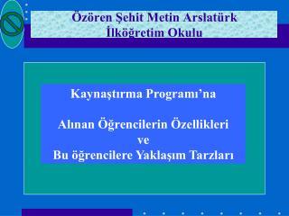 Özören Şehit Metin Arslatürk  İlköğretim Okulu