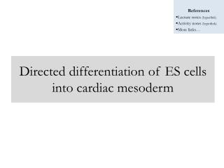 Directed differentiation of ES cells into cardiac mesoderm