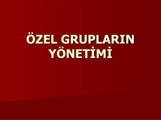 ÖZEL GRUPLARIN YÖNETİMİ