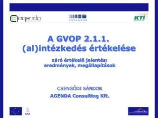 A GVOP 2.1.1.  (al)intézkedés értékelése záró értékelő jelentés: eredmények, megállapítások