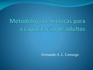 Metodologia e técnicas para a capacitação de adultos