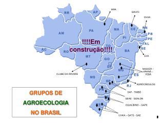 GRUPOS DE  AGROECOLOGIA NO BRASIL