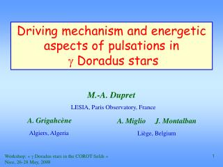 Driving mechanism and energetic aspects of pulsations in g  Doradus stars