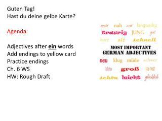 Guten  Tag! Hast du  deine gelbe Karte ? Agenda: Adjectives after  ein words