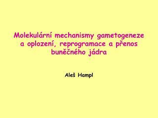 Molekulární mechanismy gametogeneze a oplození, reprogramace a přenos buněčného jádra Aleš Hampl