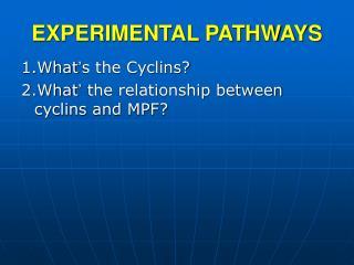 EXPERIMENTAL PATHWAYS