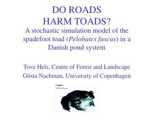 DO ROADS HARM TOADS?