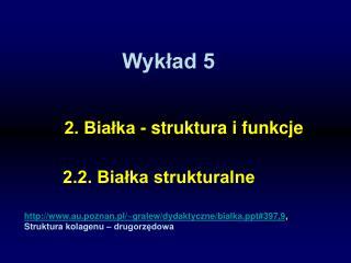 Wykład 5
