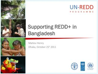 Supporting REDD+ in Bangladesh