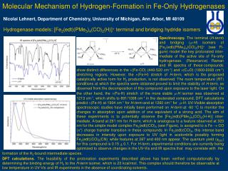 Molecular Mechanism of Hydrogen-Formation in Fe-Only Hydrogenases