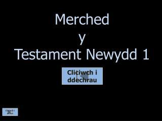 Merched y  Testament  Newydd  1