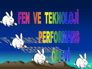 FEN  VE  TEKNOLOJ?               PERFORMANS               �DEV?