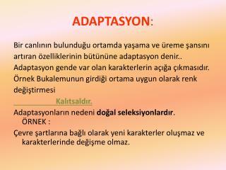 ADAPTASYON :