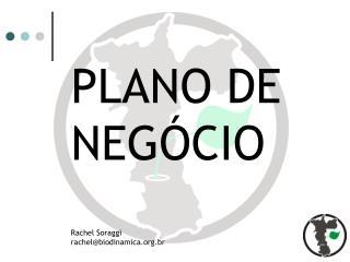 PLANO DE NEGÓCIO Rachel Soraggi rachel@biodinamica.br