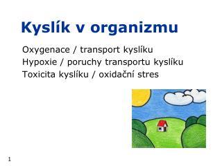 Kysl�k v organizmu