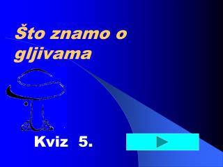 Kviz  5.